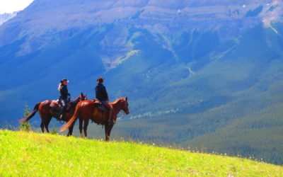 11 Ideas For Your Next Canadian Horse Vacation